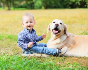 6 Ways Dogs Shape an Optimistic Personality of Your Child